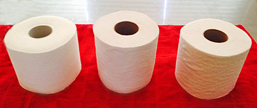 Toilet-Paper-2